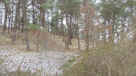 Price Changed to $189,000 in Wellfleet!